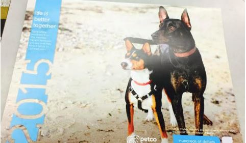 Petco: 2015 Petco Foundation Calendar + $400 Free Money Saving Pet Coupons!