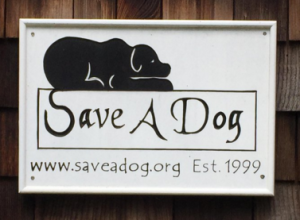 Save a Dog Paws in the Park 2016 in Sudbury MA