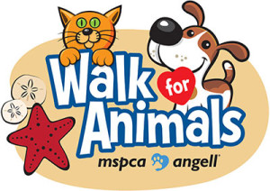 MSPCA Cape Cod Walk for Animals 2016 in Hyannis MA