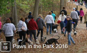 APCSM Paws in the Park Dog Walk 2016 in Easton MA