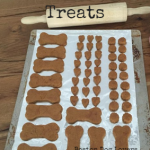 Easy Homemade Dog Food Treat Recipes