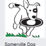 Somerville Dog Festival 2017
