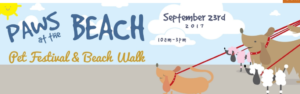 Paws on the Beach 2017 Centerville Cape Cod MA