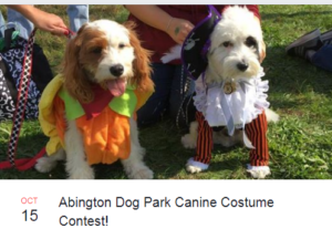 Abington Dog Park Costume Contest 2017
